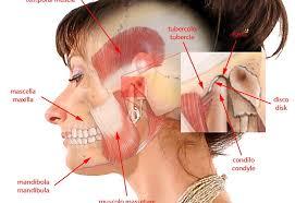 La Chirurgia Orale nel rispetto dell'Anatomia